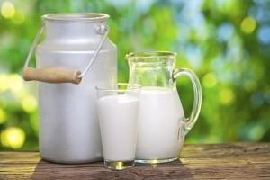latte-asina